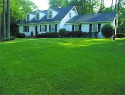 32-Landscaping services like lawn renovation and installation helps to beautify the green property